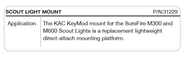 Scout Light Mount